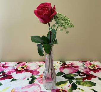 Rose in Bud Vase