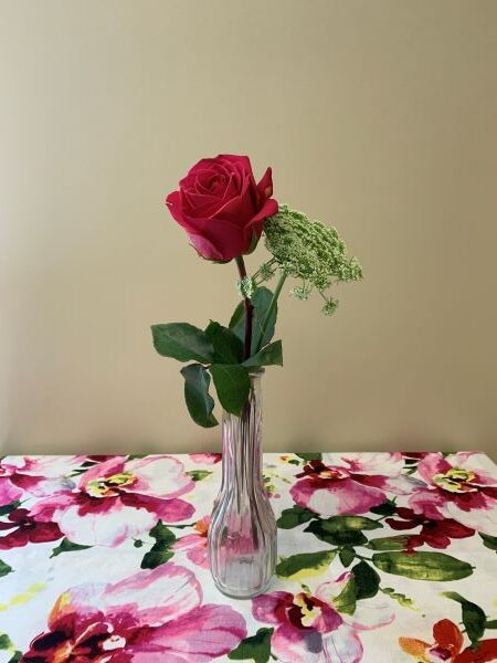Rose with Baby Breath in Bud Vase